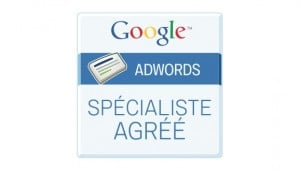 Consultant Adwords