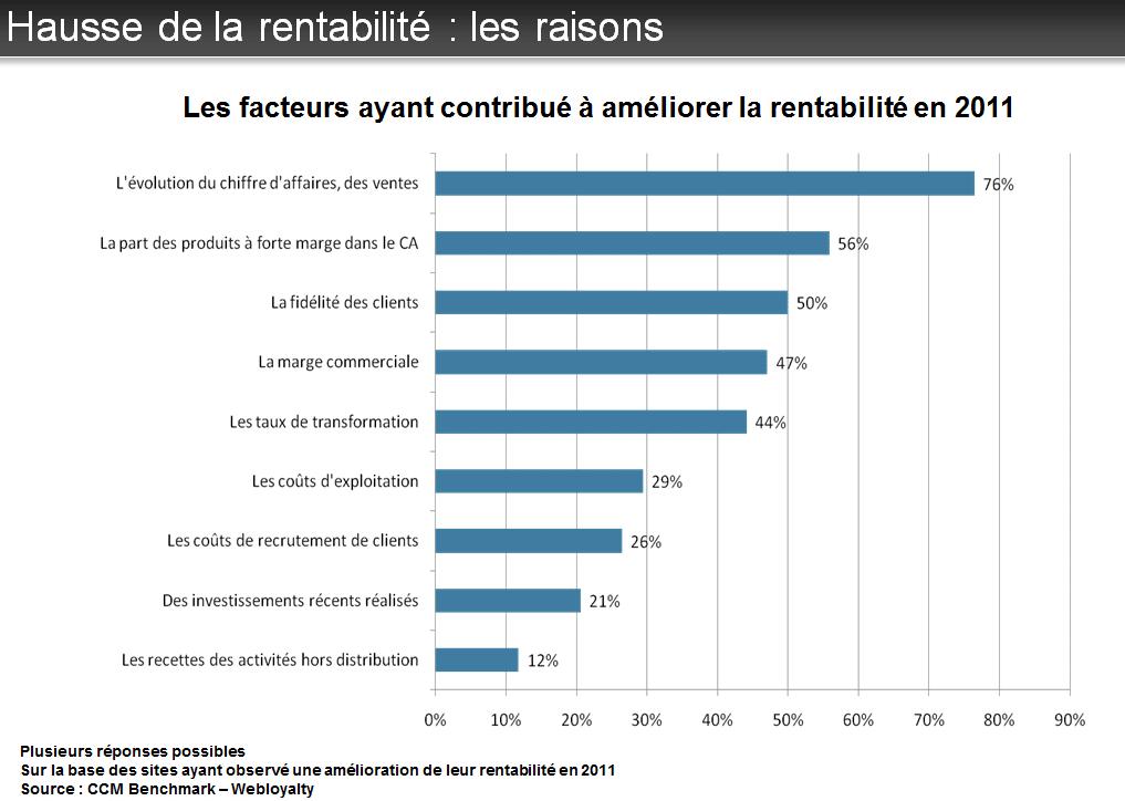 Rentabilité E-Commerce en 2013