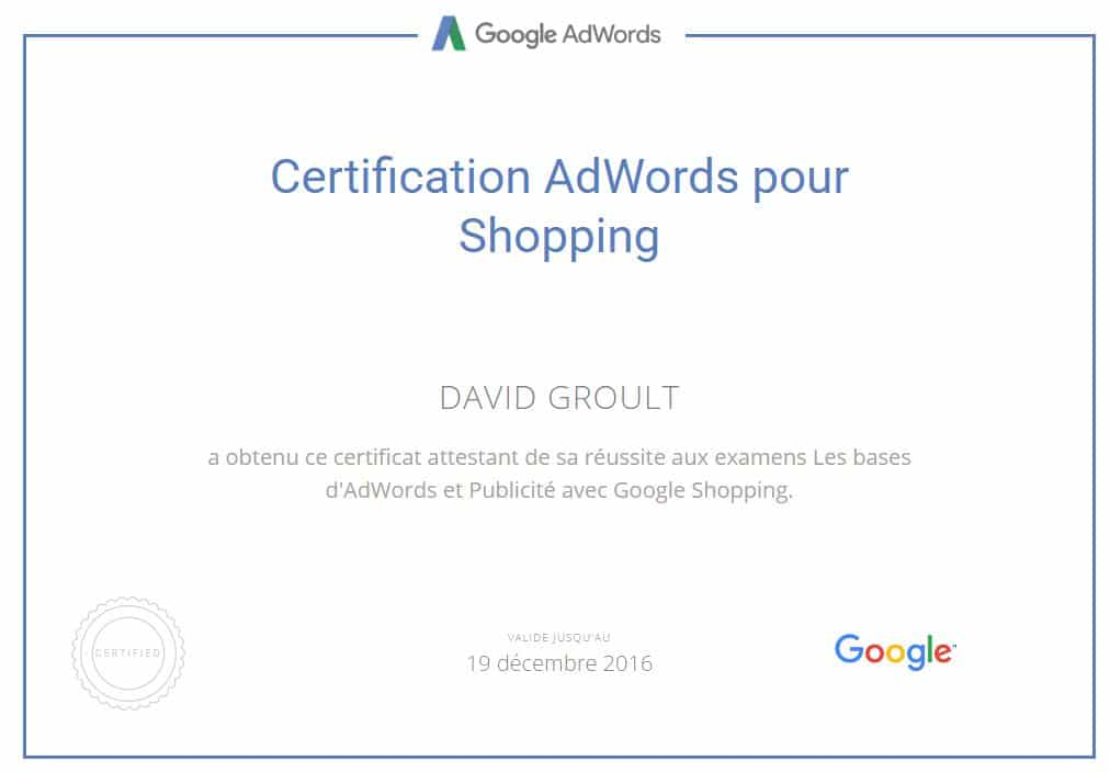 Google Shopping Adwords Angers - David Groult