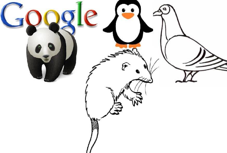 mise à jour de l'algorithme SEO de Google