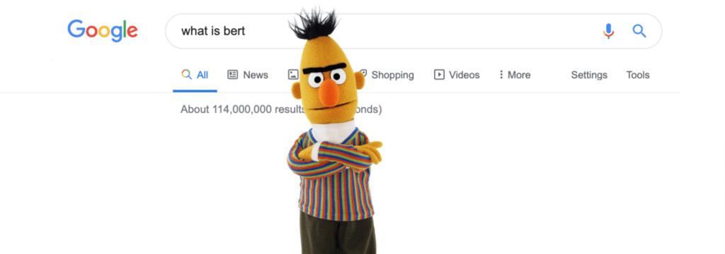 Google Bert en 2020